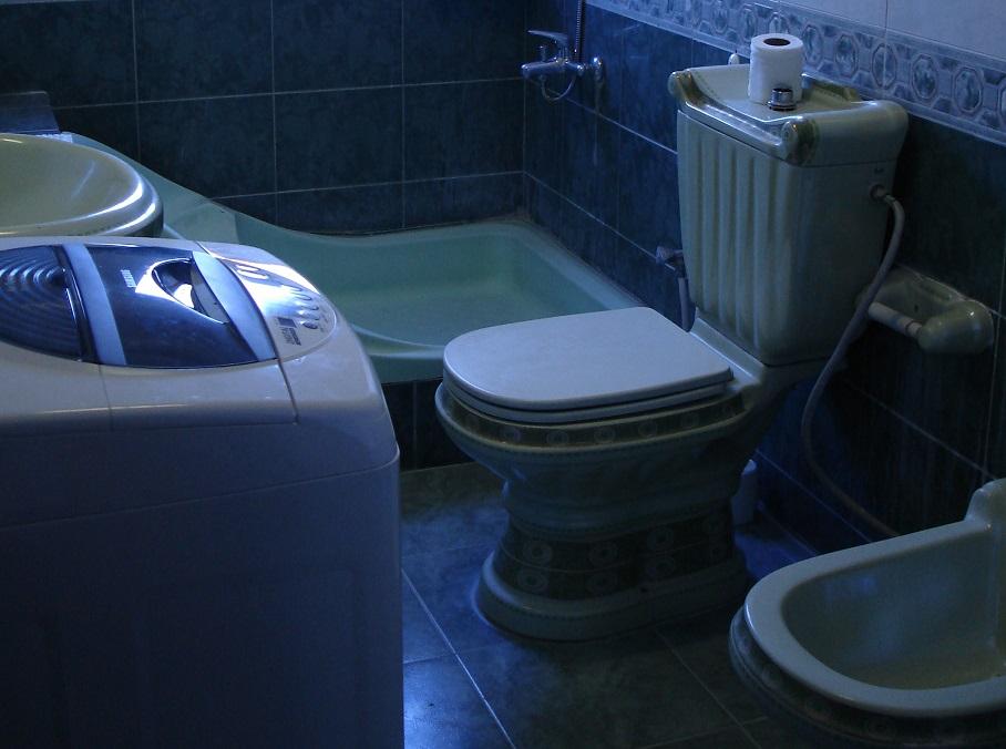 Toilet Hygiene!